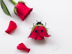 Lim Zhi Wei, arte floral